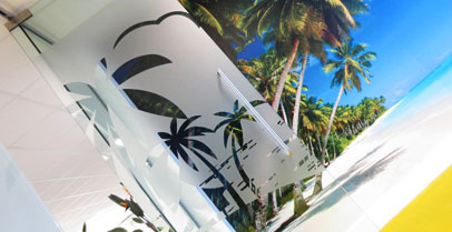 tropical-sky-branding-project